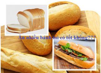 Ăn bánh mì nhiều có tốt không?