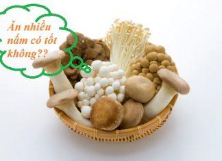 Ăn nấm nhiều có tốt không?
