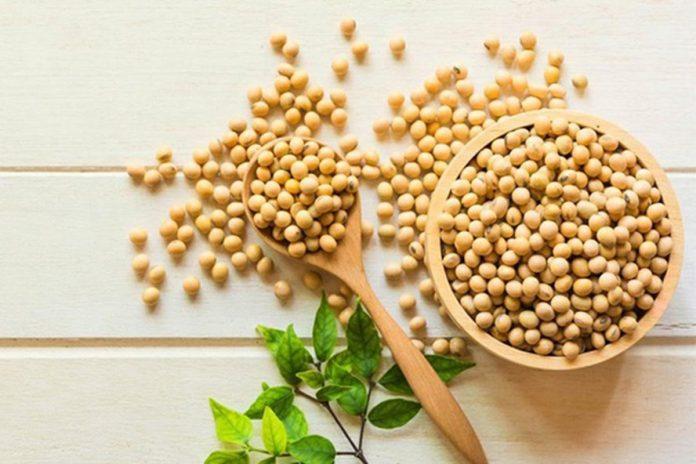 Hàm lượng dinh dưỡng trong đậu nành mang đến lợi ích gì cho sức khỏe ?